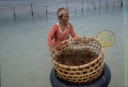 Paniere-d-algues-rouges-dans-le-lagon
