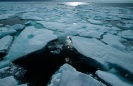 Sea ice breaking up in Nares Strait, Nunavut, Canada